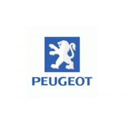 Sticker PEUGEOT logo + lettres