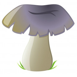 Sticker champignon Chanterelle