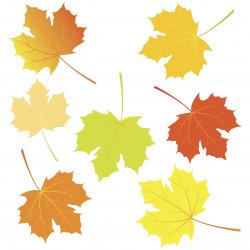 Sticker planche feuilles arbre