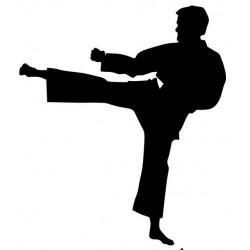 Sticker Judo