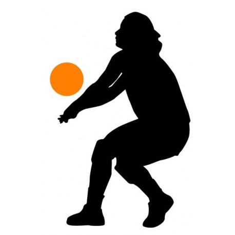 Sticker Volley