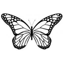Sticker papillon s'envole