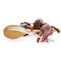 Sticker homard
