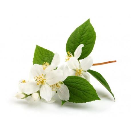 Sticker Fleur Jasmin Blanc Etiquette Autocollant