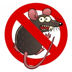 Sticker anti rat