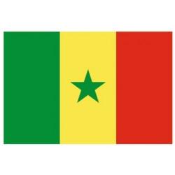 Sticker - Drapeau Sénégal REFG920