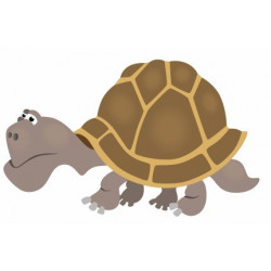 Sticker - Tortue REFG094