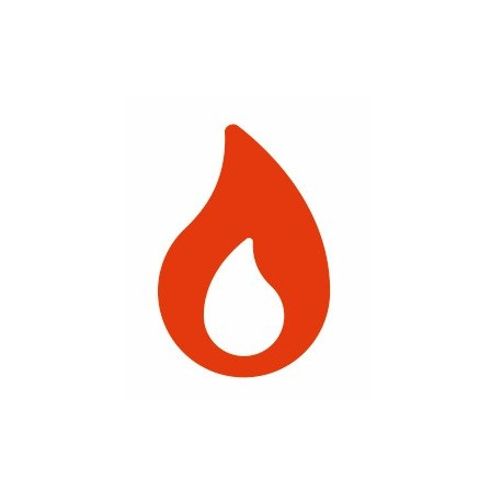 Sticker - Flamme REFH122