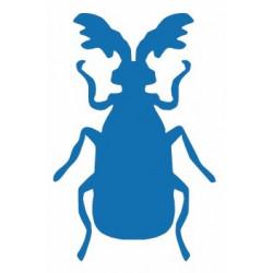 Insecte REFG321