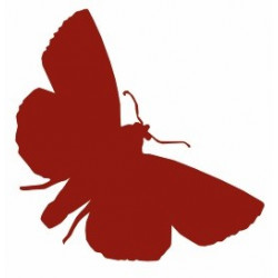 Sticker - Papillon REFG371