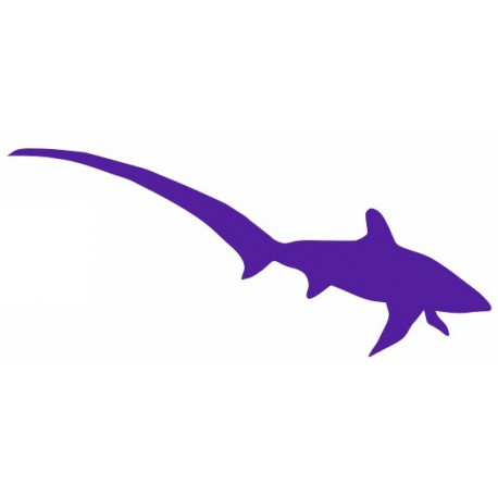 Sticker - Requin REFG455