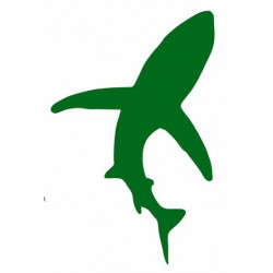 Sticker - Requin REFG459