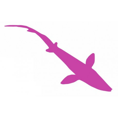 Sticker - Requin REFG461