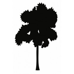 Sticker - Arbre (REFH848