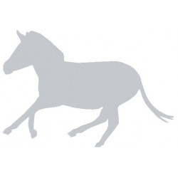 Sticker - Cheval REFG039