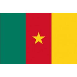 Sticker - Drapeau Cameroun (REFG890)