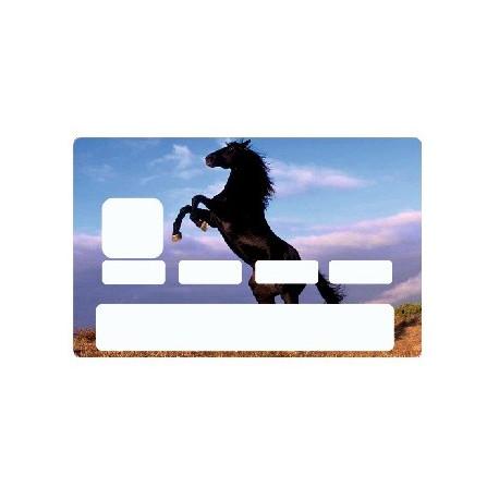 Sticker carte bancaire Cheval