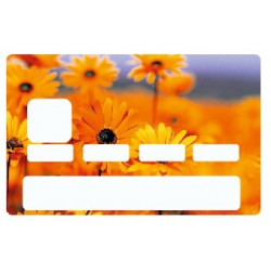Sticker carte bancaire Fleur Orange