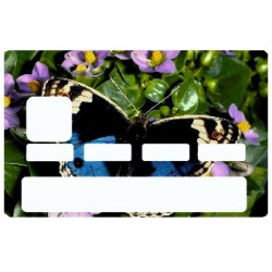 Sticker carte bancaire Papillon