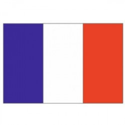 Sticker drapeau France (3 cm sur 2 cm)